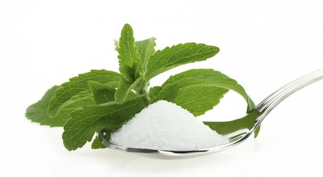 Stevia (sztívia)
