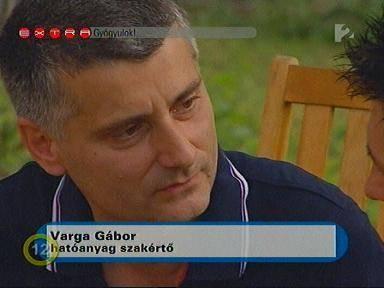 Ki is Varga Gábor a gyógygombás?